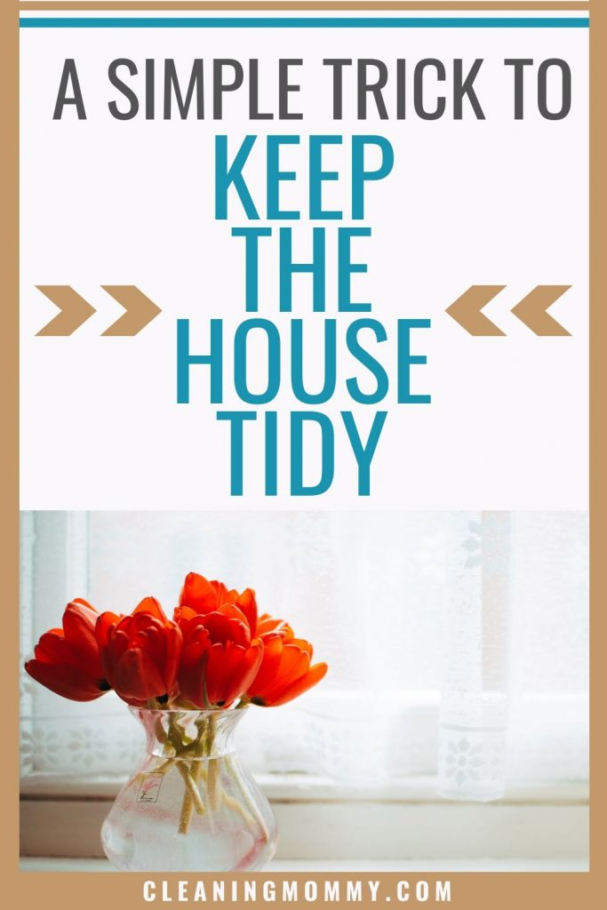 how to keep your house tidy