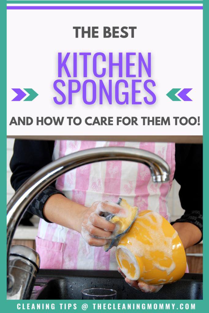 best kitchen sponge